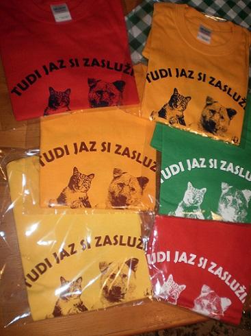 Majice v S velikosti: - rdeča z modrim tiskom, - rdeča z belim tiskom, - zelena z belim tiskom, - rumena z rjavim tiskom, - oranžna z rjavim tiskom, - oranžna z modrim tiskom.